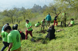 Voluntarios plantando