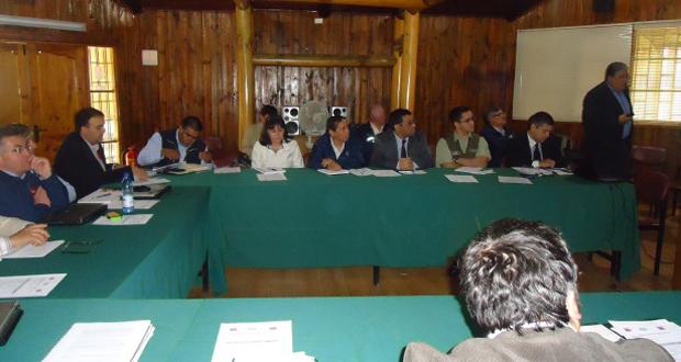 Comité de riesgos eléctricos sesionó en el Maule para coordinar acciones contra incendios forestales.