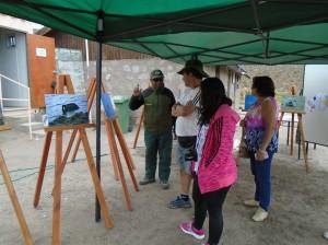 Con exposición fotográfica turistas conocen aves de Surire y Cotacotani