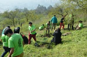 Voluntarios plantando