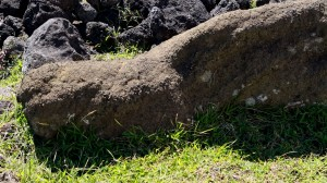 Moai en el sector de Pu'a Pau