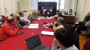 La directora regional de CONAF expone el proyecto ante comisión infraestructura del CORE