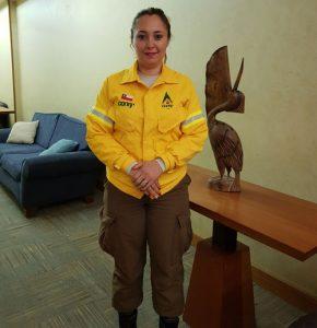Gabriela Chávez, Brigadista de Chaitén