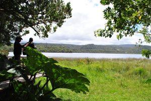 PN Chiloé.